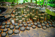 Geological Columnar Jointing Of Igneous Rocks