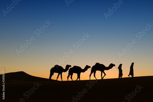 Spoed Foto op Canvas Kameel Camel (dromedary) caravan with nomads in the desert at sunrise.