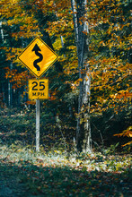 Speed Limit Road Sign With Arrow In Deep Forest. Autumn Season
