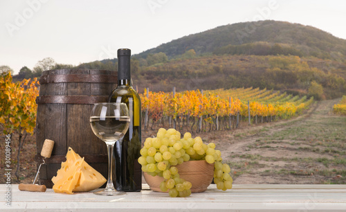 Fototapety, obrazy: Red wine with barrel on vineyard in green Tuscany, Italy
