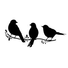 Three Birds On A Branch. Black Silhouette