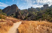 Trail Through Pinnacles Nation...