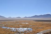 Wetlands Atacama