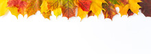 Frame Made Of Colourful Autumn Leaves Isolated On White Table. Fall Concept. Flat Lay. Banner