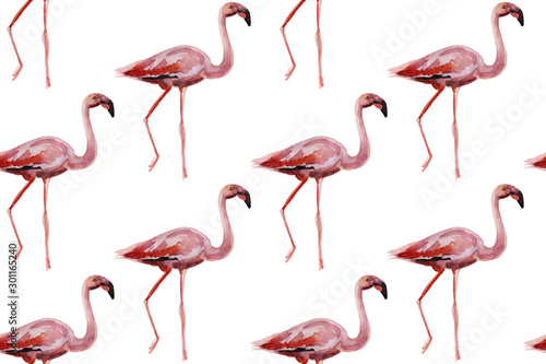 Spoed Foto op Canvas Flamingo Pink flamingos on white background. Seamless pattern for fabric, paper. Summer concept design.