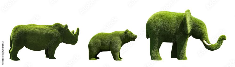 Fototapeta Beautiful elephant, bear and rhinoceros shaped topiaries isolated on white. Landscape gardening