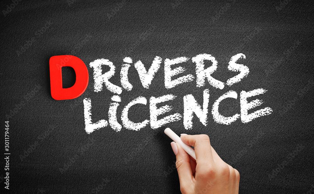 Fototapety, obrazy: Driver's license text on blackboard