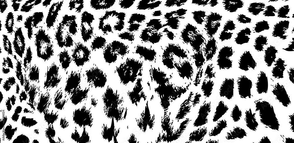 Fototapeta background texture leopard snow jaguar black white print