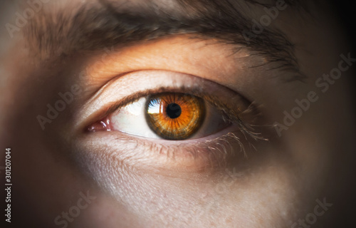 The bright orange eye and eyebrow of a dark-haired man, illuminated by sunlight Tablou Canvas