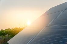 Solar Farm Green Energy Concept