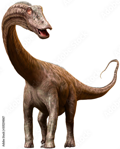 Diplodocus dinosaur from the Jurassic era 3D illustration Canvas Print