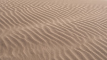 Ripples In The Sand Of A Dune In The Desert