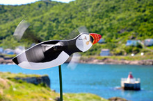 A Puffin Whirligig Blows In Th...