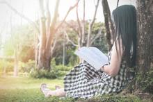 Beautiful Woman Sitting Readin...