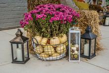 Fall Display Seasonal