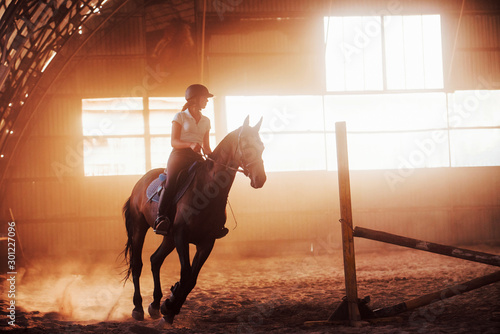 Pinturas sobre lienzo  Majestic image of horse silhouette with rider on sunset background