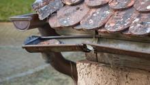 Badly Damaged Rain Gutter On Old Tile Roof