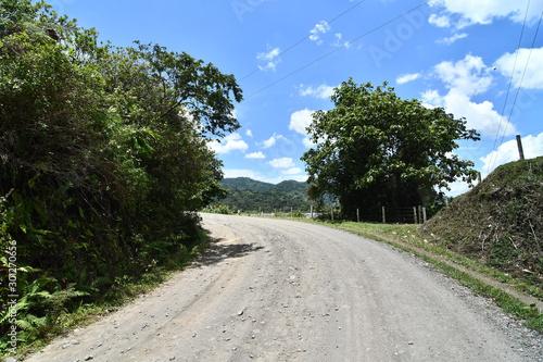 Fototapeta road in forest, photo as a background ,taken in Arenal Volcano lake park in Costa rica central america obraz na płótnie