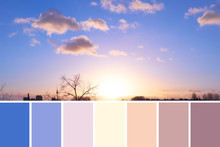 Color Matching Natural Swatch Palette From Panoramic Image Of Sky Over Berlin On Sunset With Cream And Purple Fluffy Clouds With Golden Yellow Sun On Darkening Blue Sky