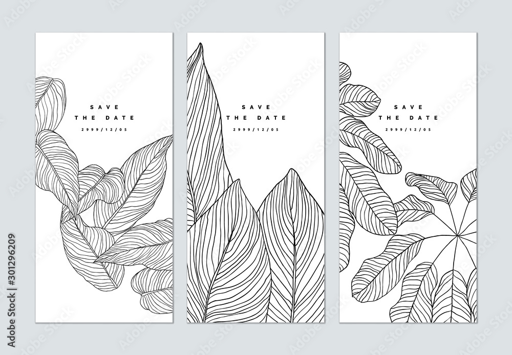 Fototapeta Set of botanical brochure cover template design, leaves line art ink drawing in black on white