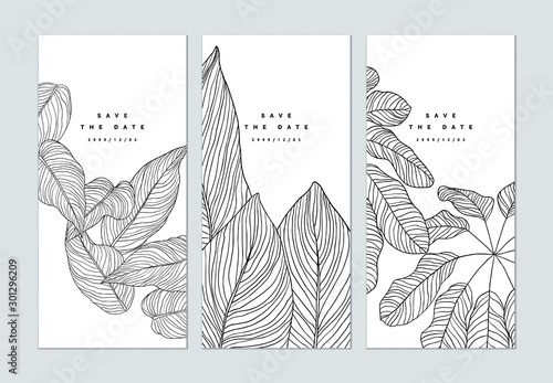 Obraz Set of botanical brochure cover template design, leaves line art ink drawing in black on white - fototapety do salonu
