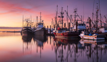 Fishing Boats In Steveston Har...