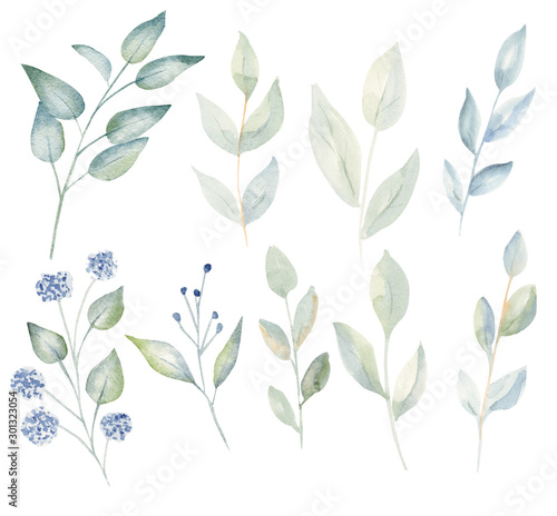 Valokuva Branches with leaves and blossoms watercolor raster illustration set