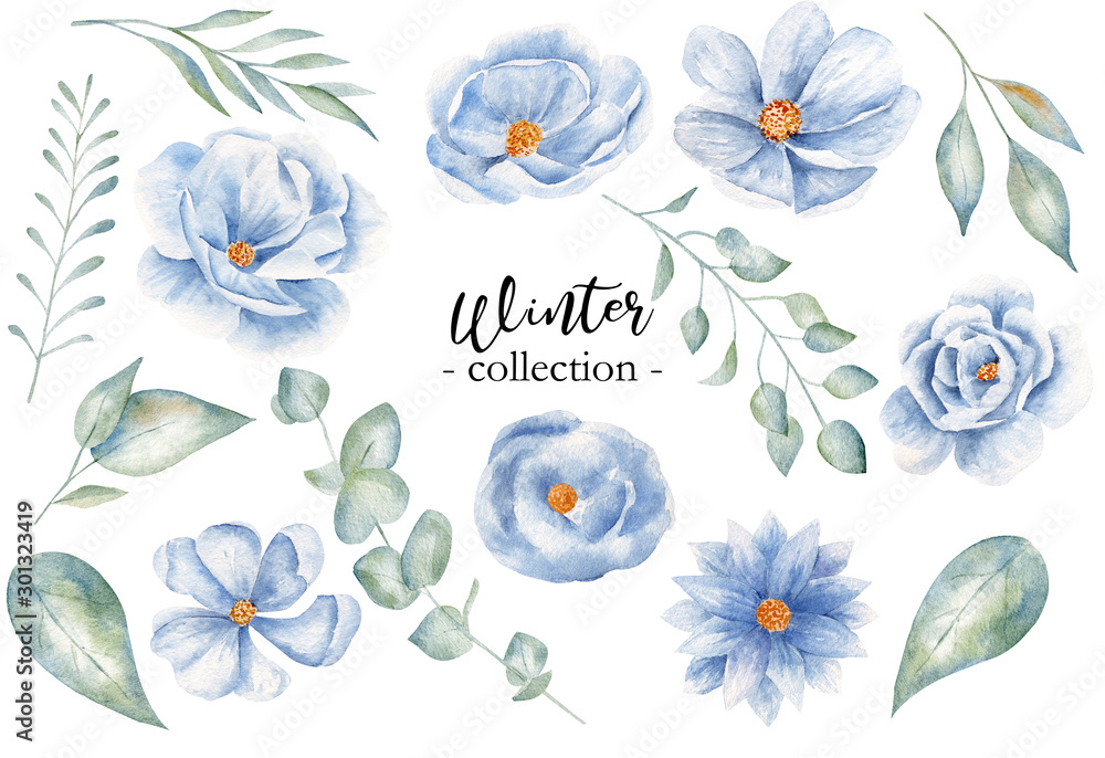 Fototapeta Winter leaves and blossoms watercolor raster illustration collection