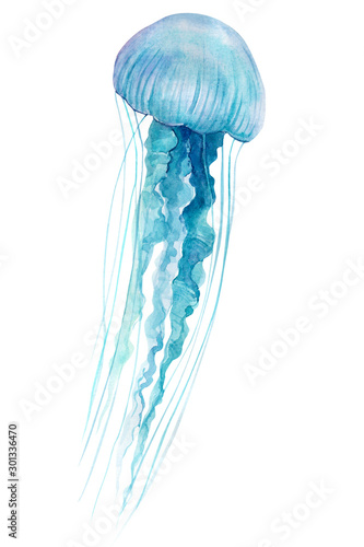 blue jellyfish on an isolated white background, watercolor illustration, hand dr Poster Mural XXL
