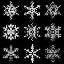 Various Winter Snowflakes Vector. Set Of Nine White Snowflake On Black Background
