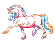 Colorful Vector Pony 2