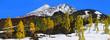 canvas print picture - Pico del Teide mit Schnee und Lavafeld, Insel Teneriffa, Kanaren, Spanien, Europa, Panorama