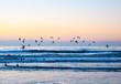 canvas print picture - Möwen über Meer Winterabend