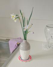 Wild Daffodil And Iris Japonic...