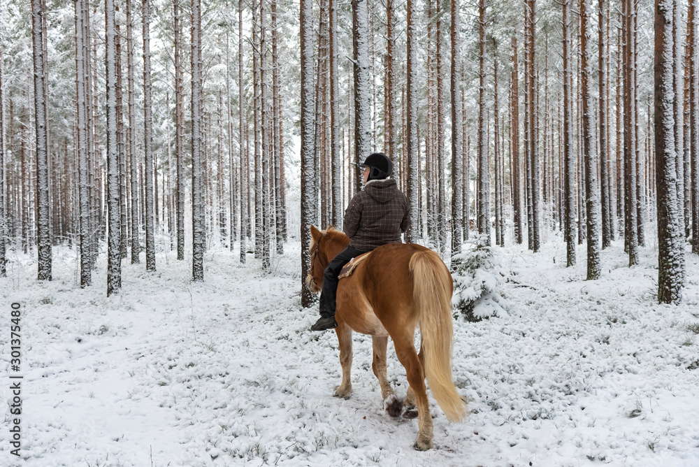 Fototapety, obrazy: Woman horseback riding