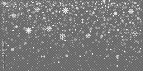 Christmas snow falling snowflakes isolated on transparent background vector illustration. EPS 10