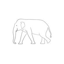 White Image Outline Elephant A...