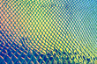 canvas print picture - Holographic neon background. Wallpaper hologram abstract gradient