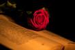 canvas print picture - una candela illumina una rosa su di un libro aperto