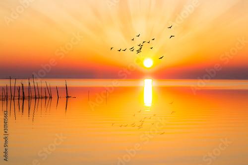 fototapeta na ścianę atardecer sobre el lagos con aves volando hacia el sol