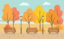 Autumn Park With Foliage On Ro...