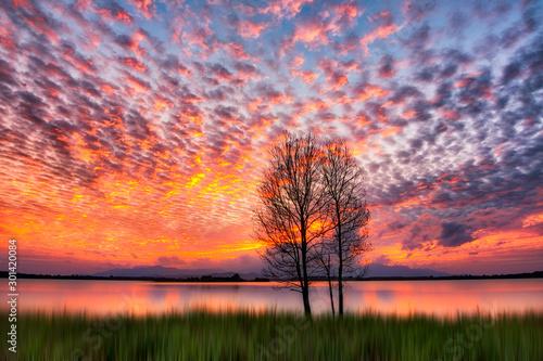 Foto auf Leinwand Hochrote Scene of beautiful sunrise in the morning.