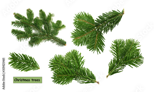 Valokuva christmas trees isolated on white background