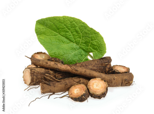 Tablou Canvas Burdock roots isolated on white background