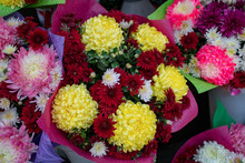 Bouquets Of Chrysanthemums Are Freshly Beautiful And Have Healing Power.