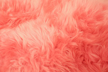 Close Up Pink Fur Texture For ...