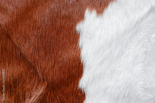 Fur cow leather texture background - 301431822