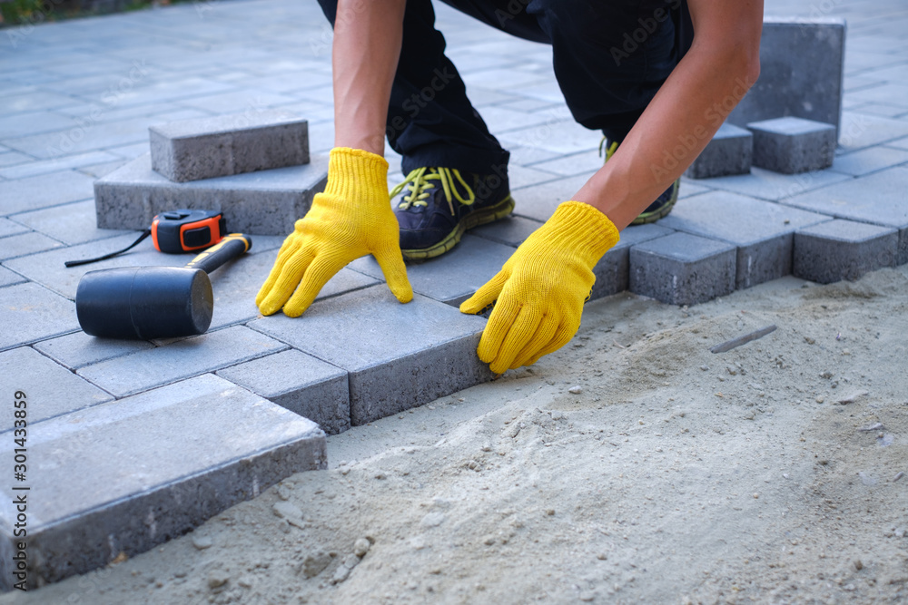 Fototapety, obrazy: The master in yellow gloves lays paving stones in layers. Garden brick pathway paving by professional paver worker. Laying gray concrete paving slabs in house courtyard on sand foundation base.