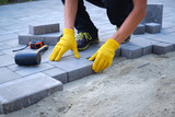 Fototapeta Kamienie - The master in yellow gloves lays paving stones in layers. Garden brick pathway paving by professional paver worker. Laying gray concrete paving slabs in house courtyard on sand foundation base.