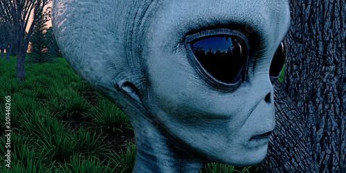 Alien Grey Humanoid Extraterrestrial Being in a forest extremely detailed and re Canvas Print